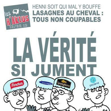 http://a403.idata.over-blog.com/391x391/0/19/24/98/drole/findus-verite-si-jument.jpg