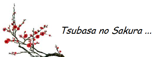 http://tsubasasakura.over-blog.fr/
